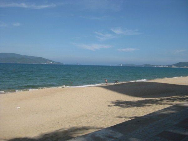 Strandpromede