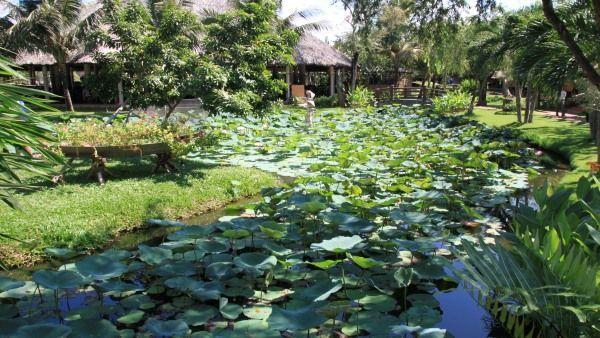 Flora Vietnams