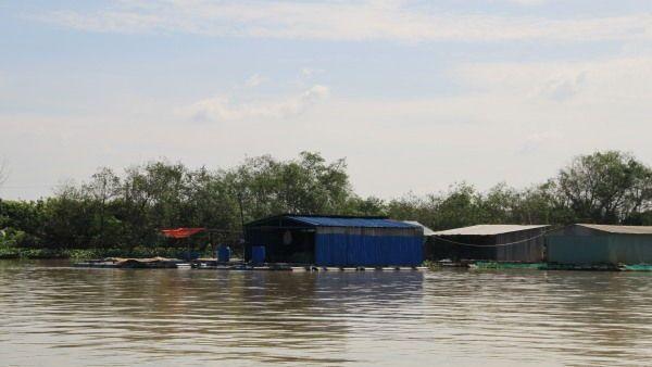 Fischfarm bei Bac Lieu
